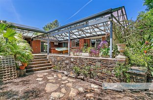 Picture of 3 Gullyview Court, Wynn Vale SA 5127