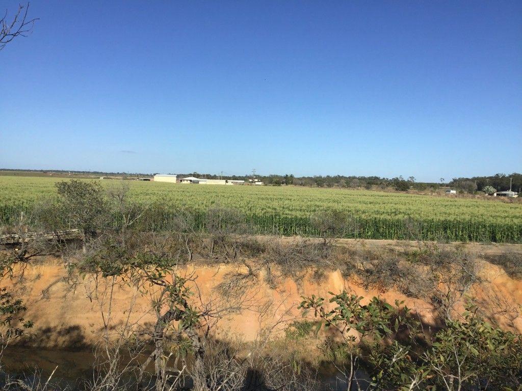 Lot 3 Honors Road, Alloway QLD 4670, Image 2