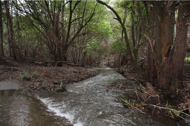 Picture of 142 Littleback Creek Road, MARLEE NSW 2429