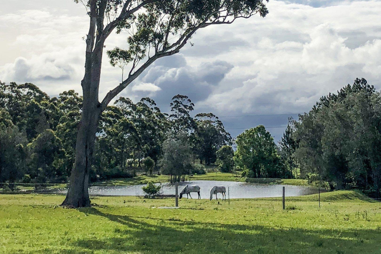 4 Pastures Drive, Medowie NSW 2318, Image 0