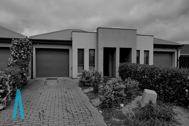Picture of 37A Waterman Terrace, MITCHELL PARK SA 5043