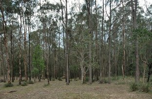 Picture of Wollombi NSW 2325