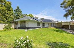 Picture of 8 Rosalind Street, Burnside SA 5066
