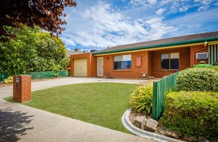 Picture of 3/69 Mayfair Drive, Wodonga VIC 3690