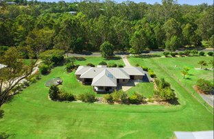 Picture of 21 Flooded Gum Pl, Black Mountain QLD 4563
