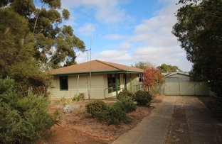 Picture of 13 Rees Crescent, Kapunda SA 5373