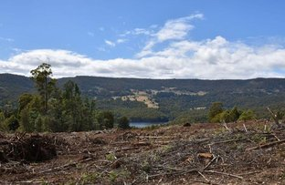 Picture of Lot 1 Dolcoath Road, Moina TAS 7310
