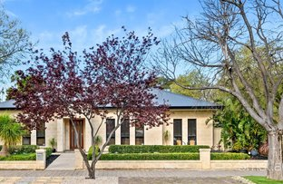Picture of 66 Denman Terrace, Lower Mitcham SA 5062