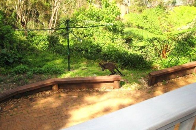 Picture of 1 Sir Thomas Mitchell Drive, DAVIDSON NSW 2085