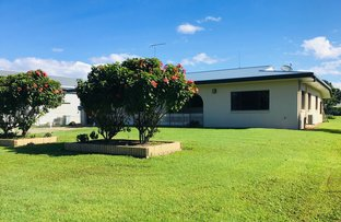 Picture of 36 Jack Evans Dr, Silky Oak QLD 4854