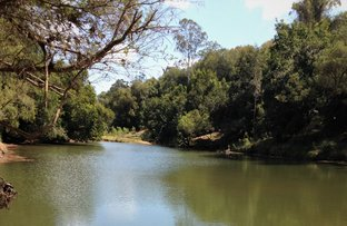 Picture of Munna Creek QLD 4570