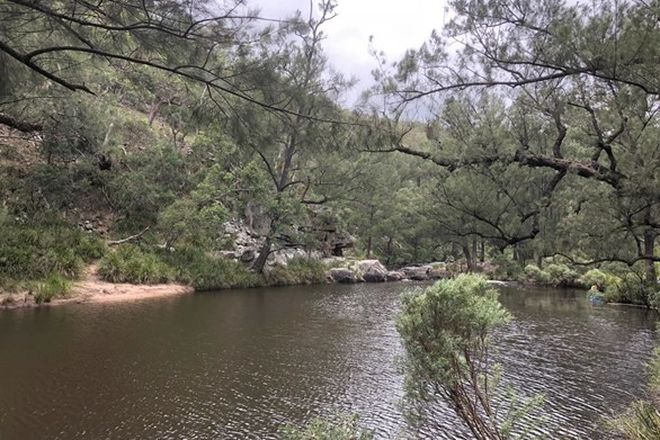 Picture of 326 Pyes Creek Road, BOLIVIA NSW 2372