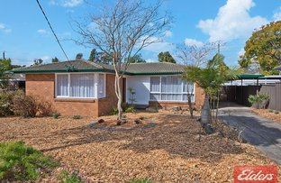 Picture of 5 Hurley Street, Toongabbie NSW 2146