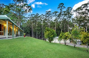 1705 Dooralong Road, Lemon Tree NSW 2259