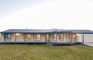 Picture of 24 Kilmarnock Road, Young NSW 2594
