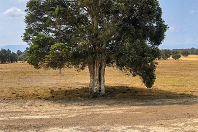 Picture of Lot 1 Tea Tree Lane, NOWRA HILL NSW 2540