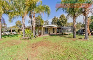 Picture of 484 Chitty Road, Bakers Hill WA 6562