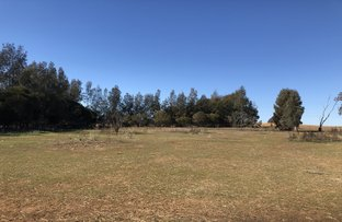 Picture of Lot 10 Young Road, Cowra NSW 2794