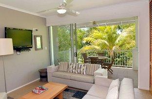 Picture of 92/70-76 Davidson Street, Port Douglas QLD 4877