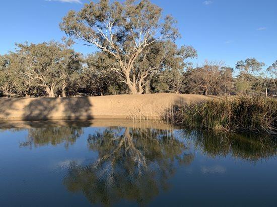 Glendale, Walgett NSW 2832, Image 1