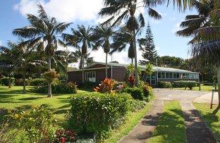 Cascade Road, Norfolk Island NSW 2899
