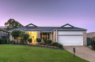 Picture of 19 Redstart Street, Upper Coomera QLD 4209