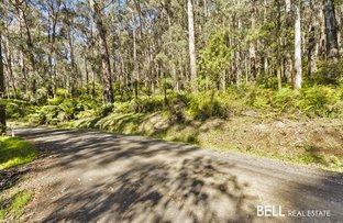 Picture of lot/44 Beenak East Road, Gembrook VIC 3783