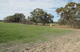Picture of Lot 251 Tambellup West Road, Tambellup WA 6320