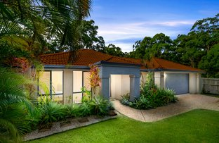 Picture of 25 Gallery Place, Little Mountain QLD 4551