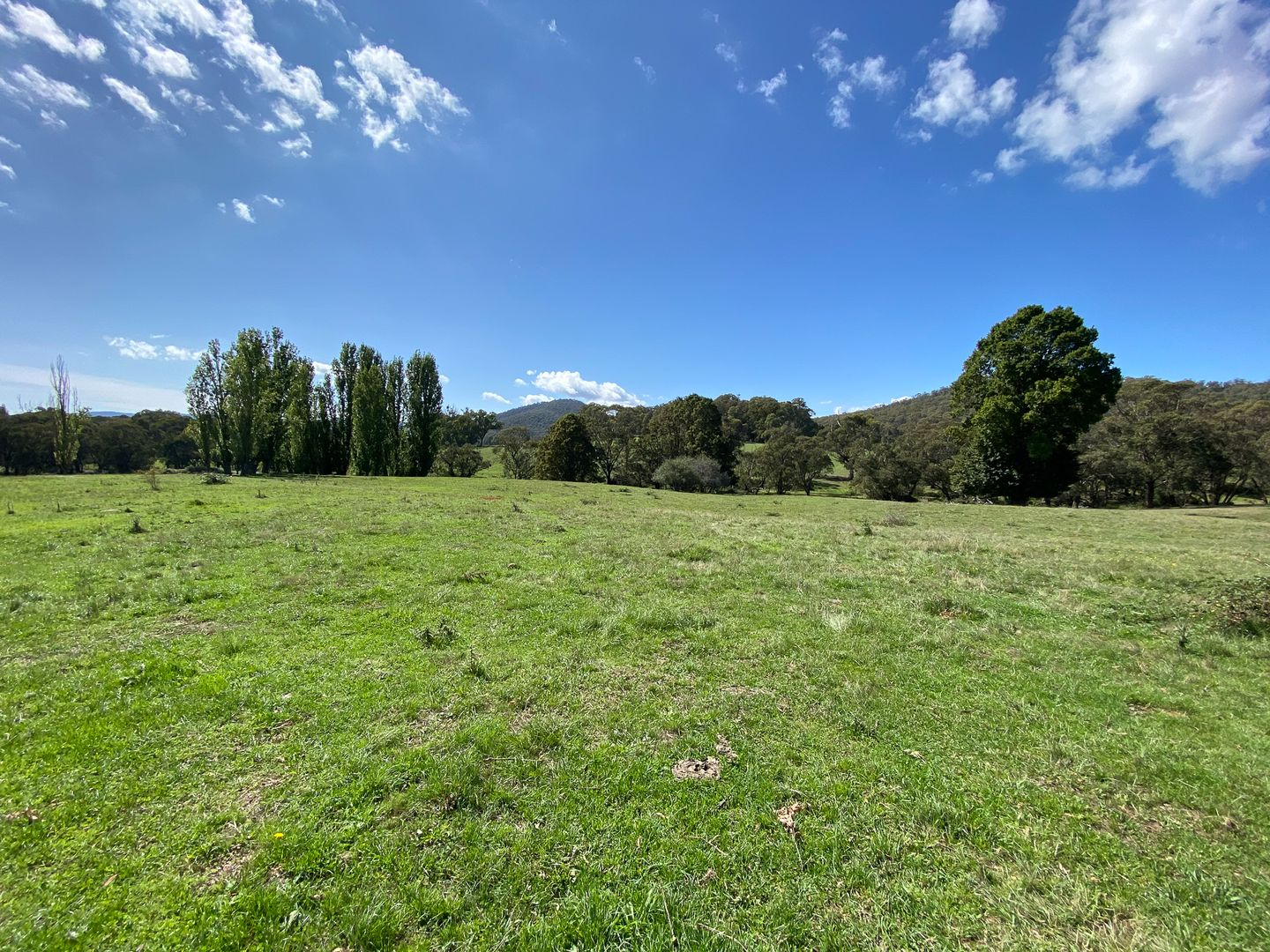 1456 Nottingham Road, Wee Jasper NSW 2582, Image 1