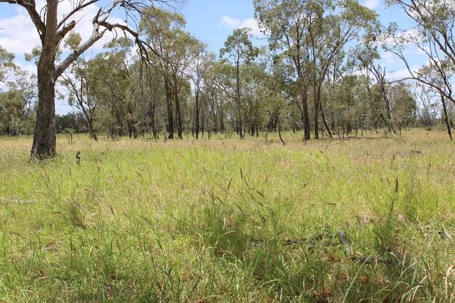 Picture of 8315 Jericho Road, BLACKALL QLD 4472