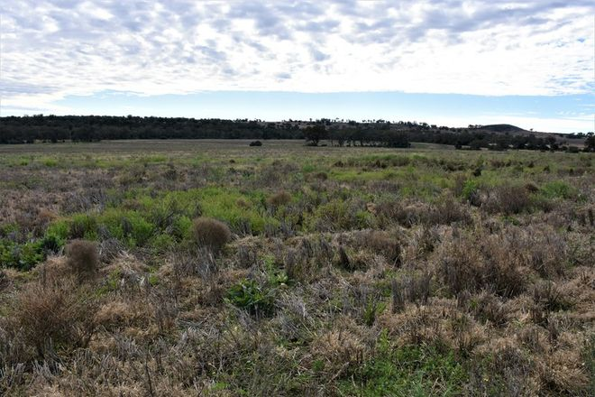 Picture of Lot 15 Leyburn Valley, GUNNEDAH NSW 2380