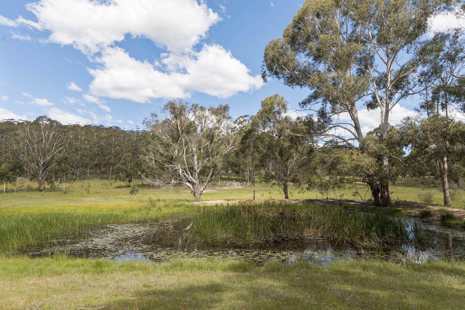 733 Hereford Hall Road, Braidwood NSW 2622, Image 1