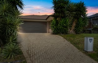 Picture of 44 Kenneth Drive, Augustine Heights QLD 4300