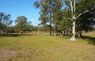 Picture of BUTTERWICK RD, Butterwick NSW 2321