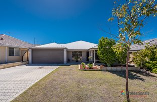 Picture of 74 Harden Park Trail, Carramar WA 6031