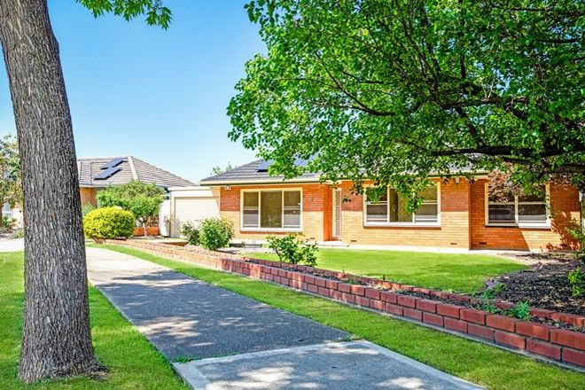 Picture of 3 Chatswood Grove, UNDERDALE SA 5032