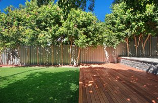 Picture of 12 Messiter Street, Campsie NSW 2194