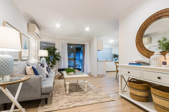Picture of 5/155 Central Avenue, INDOOROOPILLY QLD 4068