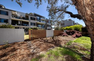 Picture of 145/395 Antill Street, Watson ACT 2602