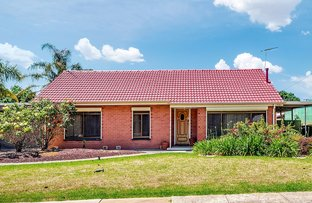 Picture of 3 Waytown Street, Elizabeth Park SA 5113