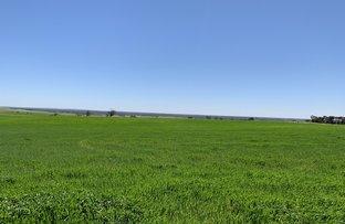 Picture of 19943 Flinders Highway, Talia SA 5670