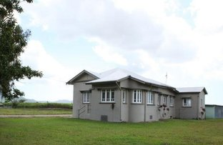 Picture of 288 Old Tully Road, Midgenoo QLD 4854