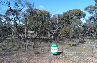 Picture of - Reservoir Road, St Arnaud VIC 3478