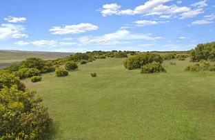 Lot 1 Great Ocean Road, Princetown VIC 3269