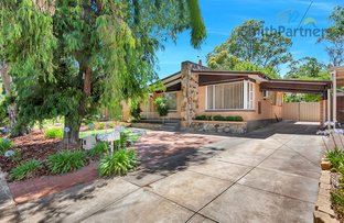 Picture of 3 Holmes Avenue, Redwood Park SA 5097