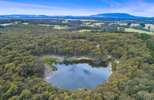 Picture of Lot 1 LP87601 Falloons Road, Ashbourne VIC 3442