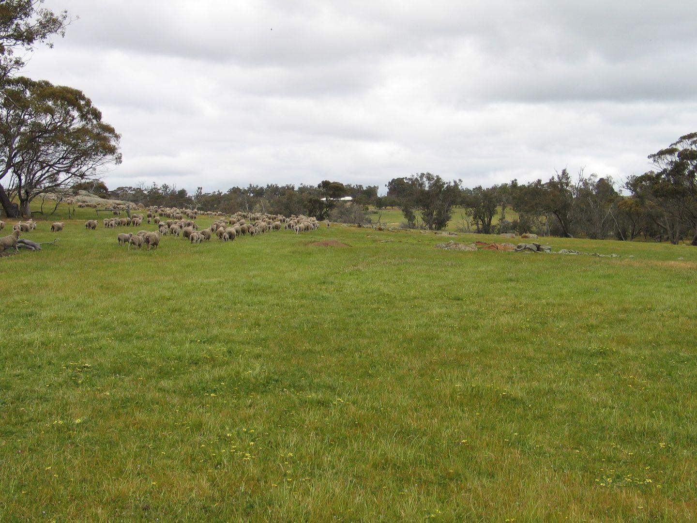 Browns Clarke Road, Coalfields Highway, Arthur River WA 6315, Image 1