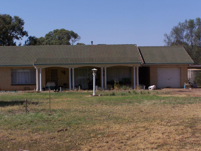 Farm 590, Coleambally NSW 2707, Image 1
