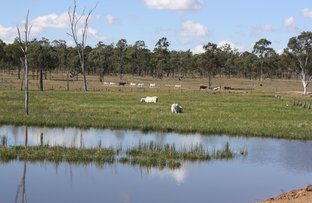 Picture of 3071 Boondooma Road, Mundubbera QLD 4626